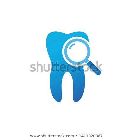 diş · bakteriler · tıbbi · diş · örnek - stok fotoğraf © kyryloff