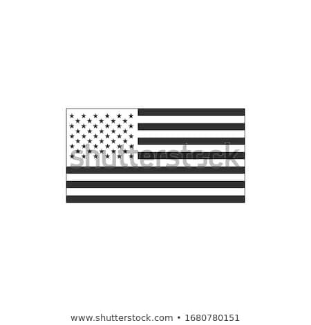 Black American flag. Stock Vector illustration isolated on white background. Stock photo © kyryloff