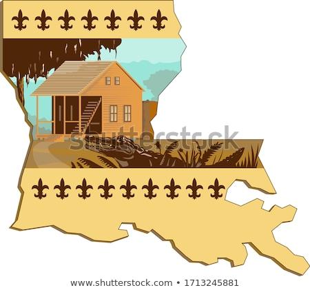 Cajun House and Gator In Louisiana State Map WPA Retro Stock photo © patrimonio