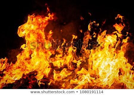 Büyük yangın turuncu şenlik ateşi gece çim Stok fotoğraf © vapi