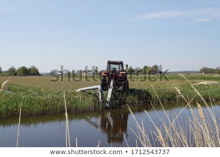 tractor, Noord Holland, Netherlands Stock photo © phbcz