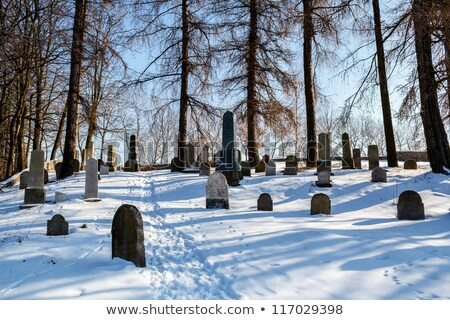 Forgotten And Unkempt Jewish Cemetery With The Strangers Zdjęcia stock © Artush