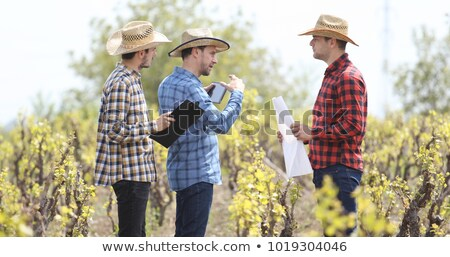 Vintner visiting the winery Stock photo © photography33