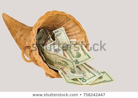 Сток-фото: рог · изобилия · евро · деньги · Финансы · законопроект