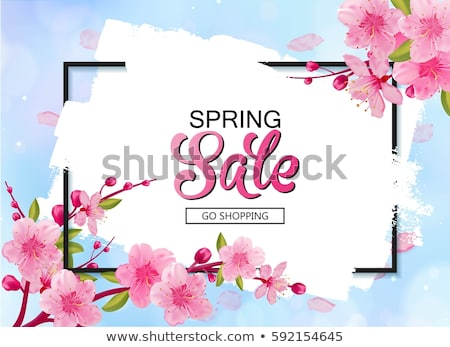Grunge Spring Frame stock photo © WaD