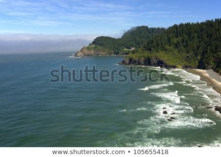világítótorony · helyreállítás · Oregon · part · erdő · hullámok - stock fotó © Rigucci