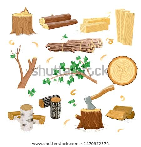樺 薪 ホット カット 樹皮 フィンランド ストックフォト © Alenmax