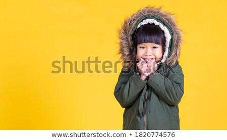 красивая · девушка · шуба · Hat · красивой - Сток-фото © lunamarina