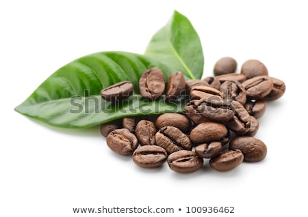coffee grains and leaves Stock photo © joannawnuk
