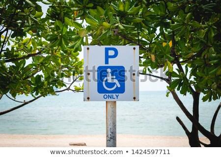 czarny · handicap · ikona · odizolowany · biały · krzesło - zdjęcia stock © tashatuvango
