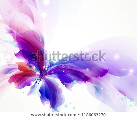 farfalle · clipart · sagome · set · isolato · bianco - foto d'archivio © derocz