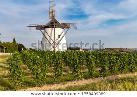 windmill in retz lower austria stock photo © tepic