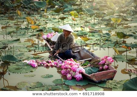 Таиланд весны оригинальный акварель Живопись красивой Сток-фото © songbird