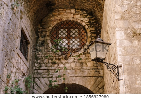 Windows with forged grating in old building Stock photo © Nejron
