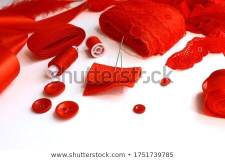 job skills on scarlet in flat design stock photo © tashatuvango