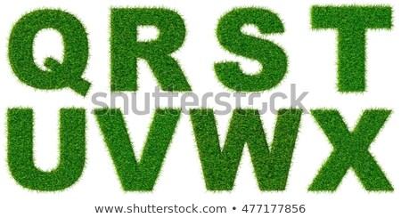 letters r s t u of 3d green grass   set stock photo © tashatuvango