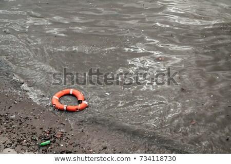 Onzin omhoog wal strand landschap zee Stockfoto © Witthaya