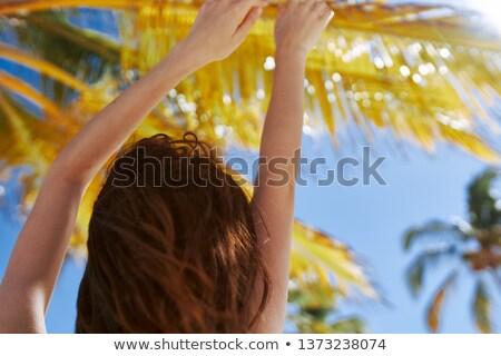 sarı · bikini · güzel · esmer · kadın · kız - stok fotoğraf © wavebreak_media