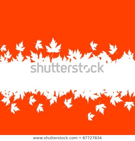 Maple Leaf два углу осень Сток-фото © zhekos
