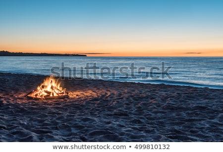 Vreugdevuur strand rio la water gras Stockfoto © lkpro