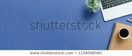 Portfolio on Laptop in Modern Workplace Background. Stock photo © tashatuvango