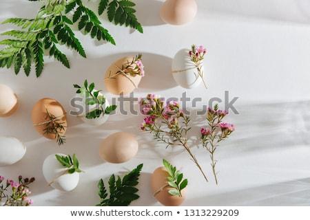 Húsvét díszítések virágok napfény dekoráció tojások Stock fotó © -Baks-
