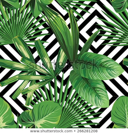 Palm leaf silhouettes seamless pattern. Tropical leaves. Vector illustration Stock photo © gladiolus
