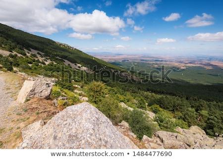 naturalismo · parque · Espanha · ver · canárias · montanha - foto stock © pedrosala