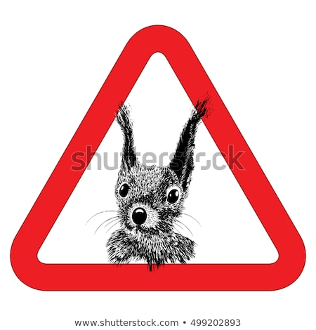 Animal free, sign warning squirrel zone vector Stock photo © Hermione