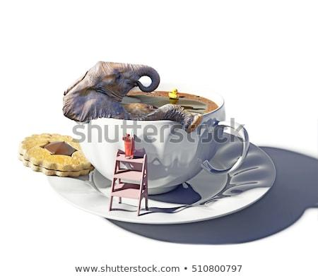 Fil küvet örnek kabarcıklar hayvan karikatür Stok fotoğraf © adrenalina