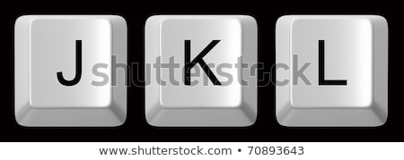 Computer keyboard key FONT. Letter L 3D Stock photo © djmilic