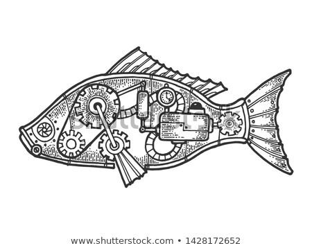 Mechanical fish Stock photo © blackmoon979