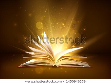 mágikus · könyv · nyitva · repülés · ragyogó · csillagok - stock fotó © dashadima