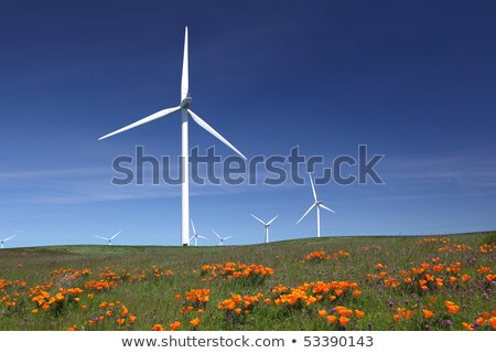 Stock photo: Wind Turbines Against Dramatic Sky and California Poppies
