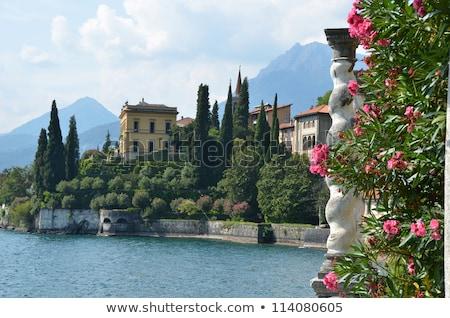 View villa pittoresco lago acqua albero Foto d'archivio © Artlover
