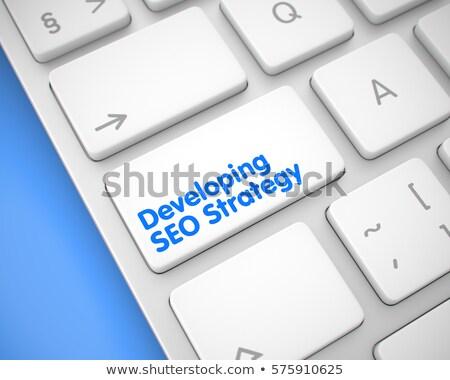 Developing SEO Strategy - Aluminum Keyboard Concept. 3D. Stock photo © tashatuvango