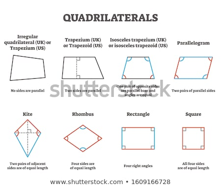 Vector diagram with various descriptive squares Stock photo © orson