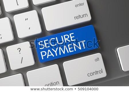 Secure Payment Button. 3D. Stock photo © tashatuvango