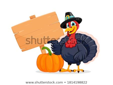 Hálaadás Törökország madár zarándok kalap rajzfilmfigura Stock fotó © hittoon