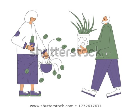 Pair of hands holding potted plant. Stock photo © IS2