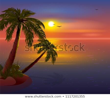 Romántica puesta de sol isla tropical palmeras mar oscuro Foto stock © orensila