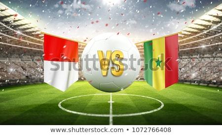 Польша · мяча · футбольным · мячом · флаг · белый - Сток-фото © zerbor