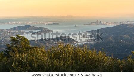 Sunset views of Marin County Hills from Mount Tamalpais East Peak. Stock photo © yhelfman