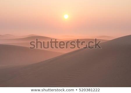 Tél hűvös reggel út napfelkelte tájkép Stock fotó © X-etra