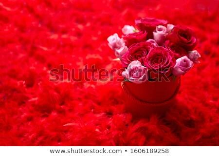 sevgililer · günü · pembe · güller · buket · hediye · kutusu · beyaz - stok fotoğraf © dash