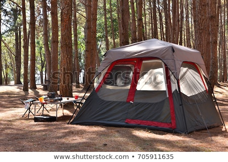 Camping tent in a winter mountain forest Stock photo © Kotenko