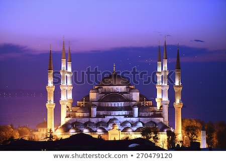 Blue mosque at sunrise Stock photo © Givaga