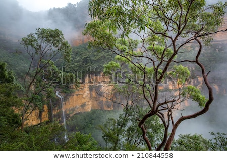 foggy waterfall in blue mountains stock photo © lovleah
