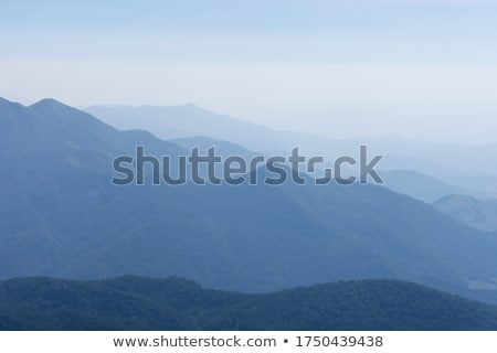 Stock photo: Fog and mist in cliffs of Blue Mountains