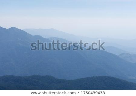 kumtaşı · orman · kayalar · bahçe · manzara - stok fotoğraf © lovleah